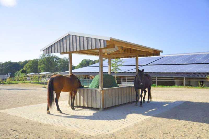 Offenstall selber bauen rundballenraufe selber bauen for Boden heuraufe pferd